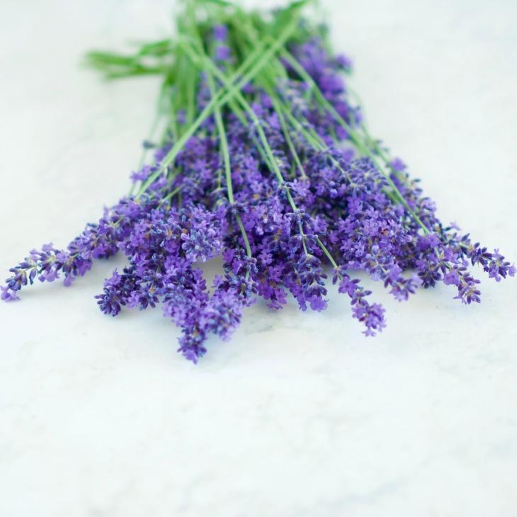 Lavender Lemonade: simple syrup, fresh flowers, lemons